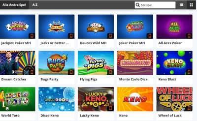 Spelguide för bingo - 88715