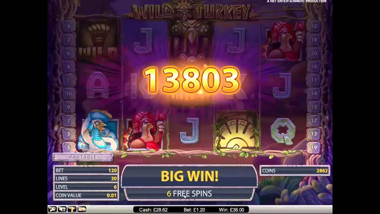Betsafe poker grafiskt - 90945
