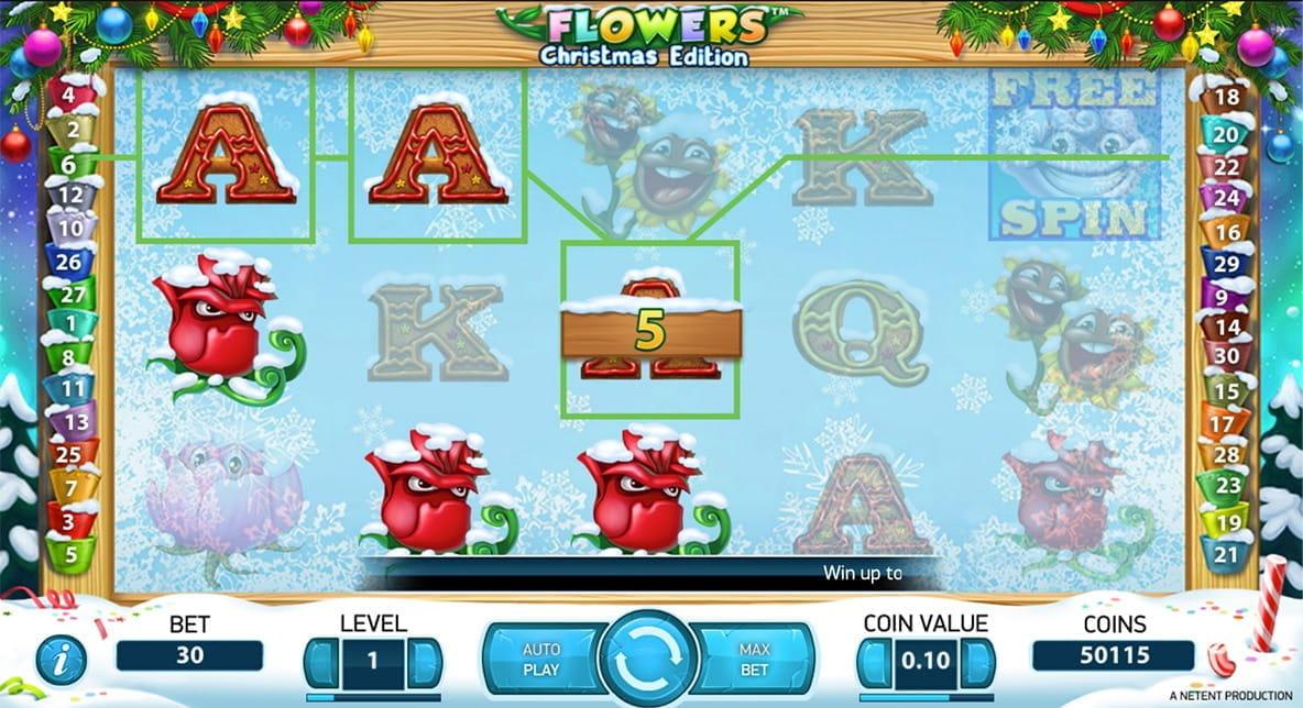 Flowers Christmas - 63869