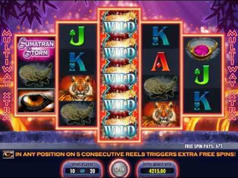 Taktik roulette - 34757