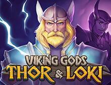 Vikings spel automat - 76650