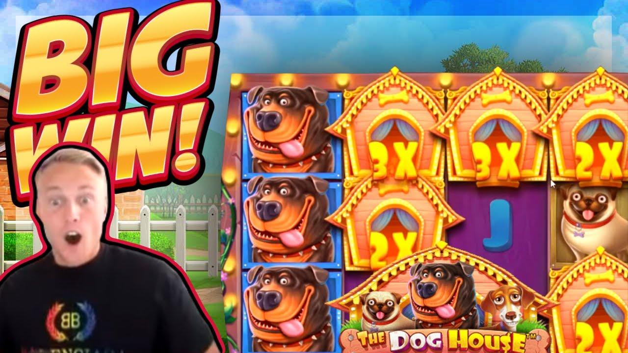 Live stream casino - 58626